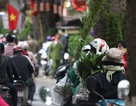 Người dân ùn ùn đổ về chợ Bưởi mua hoa chơi Tết