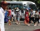 Sẽ lập đoàn kiểm tra doanh nghiệp lữ hành đón khách Trung Quốc tại Nha Trang
