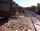 Vụ tai nạn làm tê liệt đường sắt Bắc - Nam: Do xe công nông vượt đèn đỏ