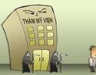 Vụ TMV Cát Tường: Quy định Luật và tòa án lương tâm
