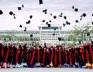 Trường ĐH Vinh thông báo điểm chuẩn tuyển sinh đại học hệ chính quy
