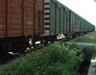 Qua đường sắt thiếu quan sát, một phụ nữ bị tàu tông nguy kịch
