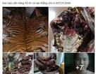 """Vụ rao bán động vật quý hiếm trên Facebook: """"Hắn rao bán người cũng được..."""" (!?)"""