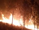 Huy động hàng trăm người dập đám cháy rừng thông trong đêm