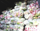 Bắt xe tải chở 2,5 tấn rau Trung Quốc không có giấy tờ