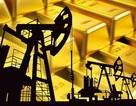 """Giá dầu giảm, """"điểm xấu"""" cho giá vàng"""