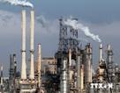 """Giá dầu mỏ thế giới """"lao dốc"""" do sản lượng tại Mỹ đạt kỷ lục mới"""