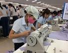 Vì sao hàng xuất khẩu Việt Nam vẫn chủ yếu là gia công, lắp ráp?