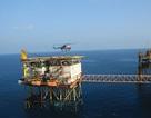 Giá dầu giảm sâu có thể khiến ngân sách giảm thu khoảng 70.000 tỷ đồng