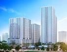 New Horizon City - hội tụ đầy đủ yếu tố để an cư