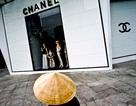 Việt Nam có tốc độ tăng người siêu giàu nhanh nhất thế giới