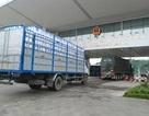 Xuất gần 10.000 tấn vải thiều sang Trung Quốc qua các cửa khẩu Lào Cai