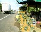 Nông sản giá rẻ tràn ra quốc lộ