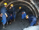 Công nhân khốn khổ vì Công ty CAVICO nợ lương và bảo hiểm xã hội