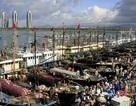 30 tàu Trung Quốc chính thức xâm phạm Trường Sa