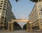Tòa án buộc Sudico dừng đại hội đồng cổ đông thường niên