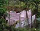 Nhà xây không phép ồ ạt thi công tại quận Tây Hồ