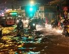 TPHCM xây kè dài hơn 8km dọc sông Sài Gòn để chống ngập