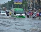TPHCM: Tăng diện tích không gian mở để hạn chế ngập lụt