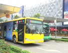 TPHCM: Ưu tiên quảng cáo hàng Việt Nam trên xe buýt