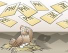 """Giải cứu con gà khỏi cảnh """"cõng"""" 14 loại phí"""