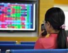VN-Index đột ngột giảm 24 điểm