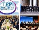 Việt Nam cam kết đẩy nhanh tiến trình phê chuẩn Hiệp định TPP