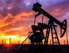 """Giá dầu xuống 30 USD/thùng: Nói """"cú sốc"""" với nền kinh tế Việt Nam là hơi nặng nề"""