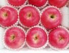 Nhật Bản muốn xuất khẩu táo sang Việt Nam trong tháng 9