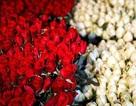 """""""Đấng mày râu"""" Hồng Kông """"phóng tay"""" nhất châu Á cho ngày Valentine"""