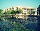 Học viện Nông Nghiệp: Giảng viên được cử đi học nước ngoài không chịu về nước