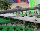 Đánh giá lại tổng thể dự án đường sắt xảy ra vụ hối lộ 80 triệu Yen