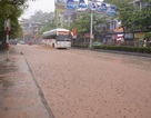 Mưa lớn tại Quảng Ninh, nhiều tuyến phố ngập sâu trong nước