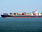 Cứu sống 8 thuyền viên trên tàu nghìn tấn gặp nạn trên biển