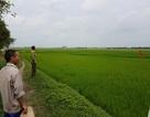 Vụ bán đất cho doanh nghiệp Trung Quốc: Dân gửi đơn lên Thanh tra Chính phủ