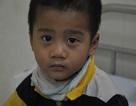 Bé 3 tuổi nguy kịch vì phì đại cơ tim