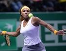 Serena Williams tiếp tục thăng hoa, Azarenka thua sốc