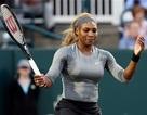 Serena William khởi đầu thuận lợi, Djokovic bỏ cuộc