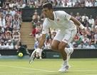 """Murray """"gọi"""", Djokovic nhanh chóng """"trả lời"""""""