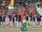 Thể thao Việt Nam tìm lối đi trong năm 2015