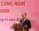Quảng Ninh: Sẽ xây dựng nhiều mô hình trồng dược liệu
