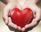 L–Carnitin quan trọng với tim như thế nào?