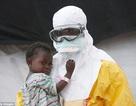 Các bác sĩ tự bảo vệ thế nào trước vi rút Ebola?