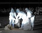 Phát hiện biến thể mới của cúm gia cầm H5N2 tại Đài Loan