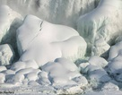 Đông lạnh cơ thể để hồi sinh trong tương lai - liệu có thành sự thật?
