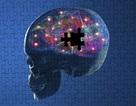 """5 """"sát thủ"""" của tế bào não"""