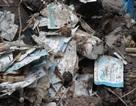 Cục Quản lý Môi trường y tế: Cần xử lý nghiệm vụ chôn lấp rác thải của bệnh viện Lê Ngọc Tùng