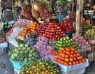 Phát hiện thức ăn chăn nuôi từ Trung Quốc chứa chất cấm