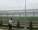 Việt Nam có trung tâm nghiên cứu lúa lai hiện đại nhất tại Nam Định