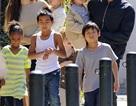 Hỗ trợ trẻ em Việt Nam làm con nuôi ở nước ngoài tìm về cội nguồn